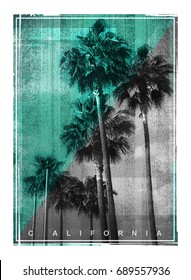 Photo print California palm illustration, tee shirt graphics, typography