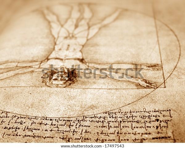 Photo of the Vitruvian Man by Leonardo Da Vinci from 1492 on textured background.