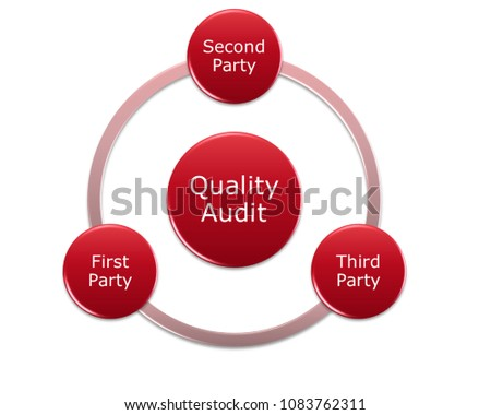 Picture Diagram Of Quality Audit Type Include First Second Third Party