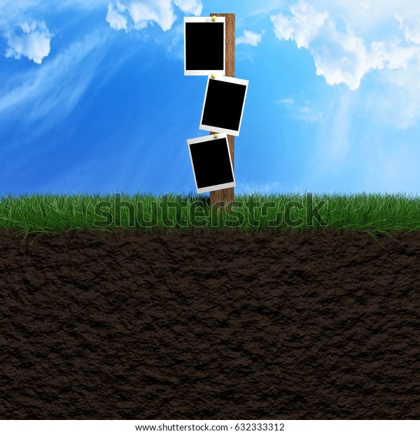 Pictures frames outside on a grass field with beautiful blue sky as background 3d illustration