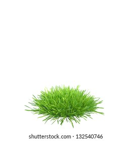 a piece of land with grass