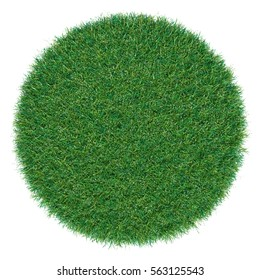 Piece of round shape grass isolated as background. Top view. 3D Illustration