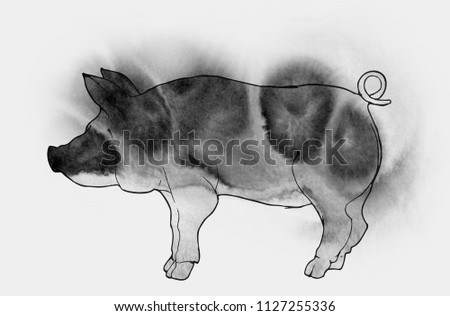 Pig Boar Japanese Chinese Painting Drawing Stock Illustration