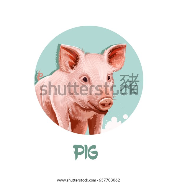 Pig chinese horoscope character isolated on white background. Symbol Of New Year 2019. Pet pink animal in round circle with hieroglyphic sign, digital art realistic illustration, greeting card design