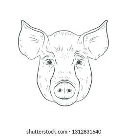 Pig head isolated on white background. Hog, pork, piglet, swine, boar. Farm or shop meat logo, icon, sign, emblem, symbol, stamp. Retro ink engraving style. Hand drawing illustration.
