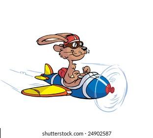 pilot rabbit