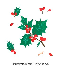 Pine cone x-mas branch with red berry isolated fir on white foliage. Christmas party flyer design concept. Winter sale fair branding. December promo decoration with hand-painted natural ilex.
