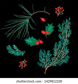 Pine cone x-mas branch with red berry isolated fir on black foliage. Christmas party flyer design concept. Winter sale fair branding. New Year seasonal celebration greeting card. Traditional Christmas