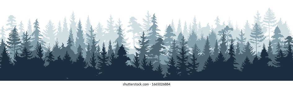 Pine forest. Silhouette wood tree background, wild nature woodland landscape.  image foggy tall trees misty engraved scene