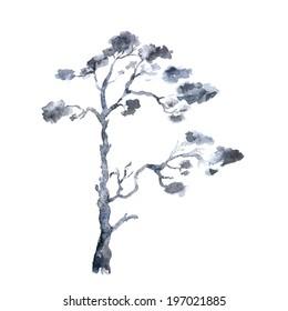 Pine. Watercolor tree.