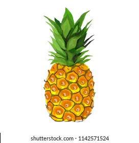 Pineapple - Digital painting Illustration