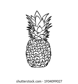 Pineapple illustration in black isolated on white background.Illustration in ink hand drawn style.