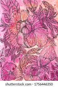 pink and burgundy watercolor background with flowing gradient. Graphic flowers peonies and buds with leaves on the field. Summer time. Hand drawing