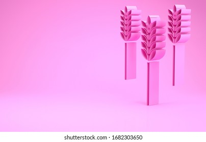 Pink Cereals set with rice, wheat, corn, oats, rye, barley icon isolated on pink background. Ears of wheat bread symbols. Minimalism concept. 3d illustration 3D render