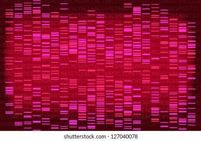 Pink DNA gel