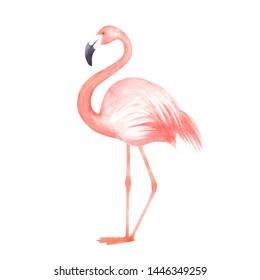 Pink flamingo elements isolated on white background set. Tropical birds.Watercolor illustration for summer tropical paradise advertising vacation design