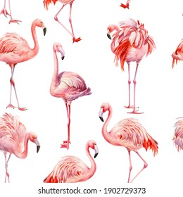 Pink flamingo isolated background, watercolor illustration, seamless pattern