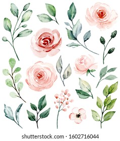 Pink flowers watercolor, floral clip art. Set blossom blush roses and leaf perfectly for printing design on invitations, cards, wall art and other. Isolated on white background. Hand painting.