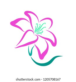Pink graceful lily, on a white background, pattern