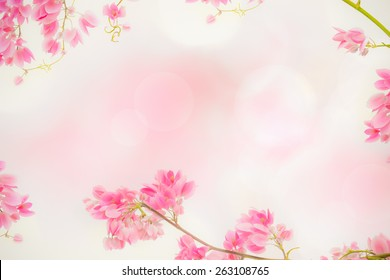 Pink ivy flower and sweet background.