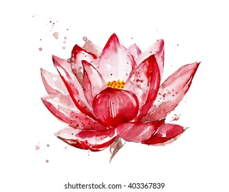 Pink lotus watercolor illustration  isolated on white background. Hand painted lotus flower. Flower with watercolor splashes, stains. Botany illustration.