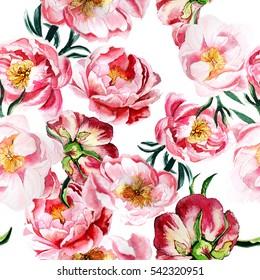 Pink peonies pattern. Seamless floral pattern.