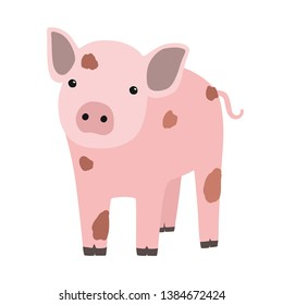 Pink pig or piglet isolated on white background. Portrait of funny cartoon barnyard animal, farm livestock or domestic pet. Colorful childish hand drawn illustration in modern trendy style.