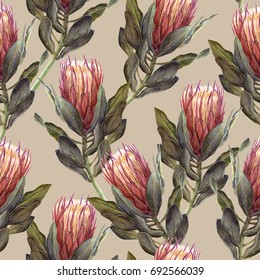 Pink Protea flower watercolor illustration. Seamless pattern design on a beige background.