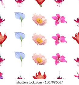 Pink and Purple Fuchsia Bella. Red Fuchsia. Red Haemanthus Blood Lily. Blue Anthurium Tailflower. Pink Peony. Pink Bauhinia Purpurea. Illustration. Seamless background pattern. Floral botanical.
