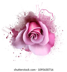 Pink rose, close-up on a white background, with spray paint. To print for textiles, interior decoration