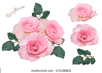Pink Rose flowers bouquet on isolated white background. Watercolor illustration hand drawn.For asset element wedding card or fabric pattern design.