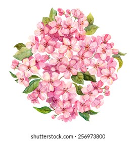 Pink spring flowers - sakura, apple flowers blossom. Watercolor