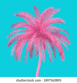 Pink Tropical Palm Tree in Duotone Style on a blue background. 3d Rendering