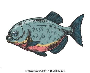 Piranha fish animal sketch engraving illustration. Tee shirt apparel print . Black and white hand drawn image.