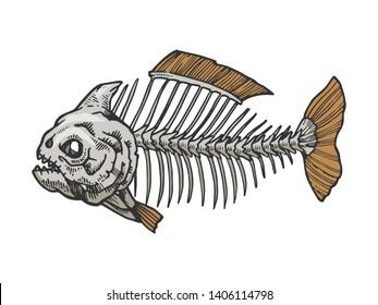 Piranha fish skeleton animal color sketch engraving raster illustration. Scratch board style imitation. Black and white hand drawn image.