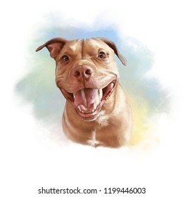 Pit Bull Terrier. Watercolor Portrait of a cute dog with a friendly smile. Animal collection: Dogs. Hand Painted Illustration of Pets. Art background for banner, cover, card, pillow. Design template