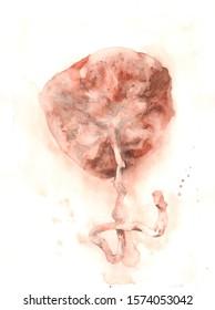 Placenta in watercolor. Postbirth art. Homebirth. Femenine anatomy of motherhood. Midwife artwork. Child nest painting. Mother. Mom. Gynecology. Pregnancy illustration.