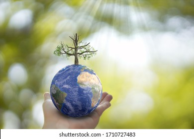 Plane Earth globe ball and growing tree in human hand on green sunny background. Saving environment, save clean planet, ecology concept. 3D Illustration. Planet Earth in hand.