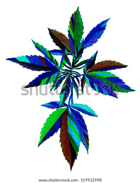 Plant - cannabis - crayon drawing