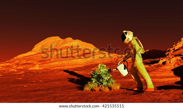 The plant image on Mars 3D illustration