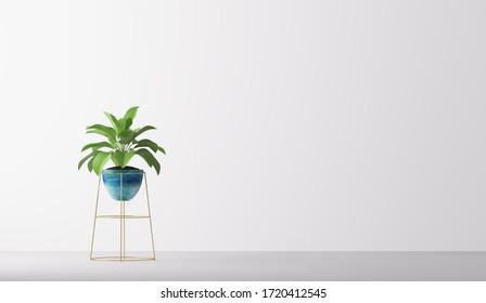 plant in pot isolated on white background. Minimal houseplant home decor, 3D render, 3D illustration