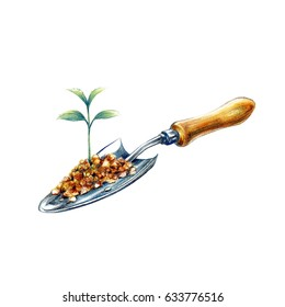 Planting tree.