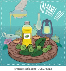 Plastic Bottle of Tamanu oil and fruits and leaves of Calophyllum plant. Hand filling ancient oil lamp. Natural vegetable oil used as fuel for oil lamp. Raster version of illustration