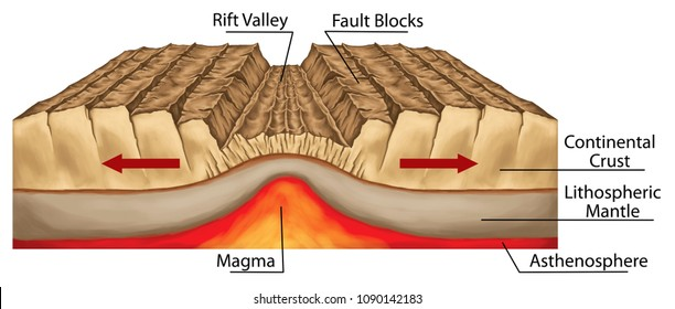 Plate tectonics, tectonic processes, interactions of the tectonic plates, types of plate boundaries, divergent boundary or divergent plate boundary, geography, geophysics, geomorphology, geology