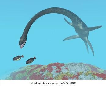 Plesiosaur Elasmosaurus Computer generated 3D illustration