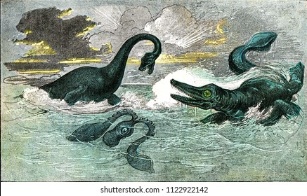 The plesiosaur and ichthyosaur of the period of the Lias, vintage engraved illustration. From Natural Creation and Living Beings.