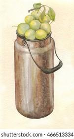 plum in the bidon. Watercolor painting