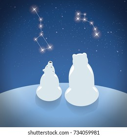 Polar bear with little bear looks at the constellations