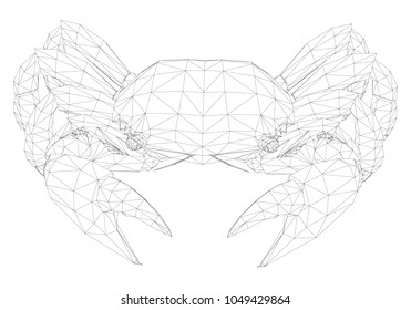 Polygonal crab in front. 3D crab black and white. The crab is covered with a polygonal mesh.