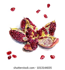 Pomegranate opened slices, watercolor illustration on white background, isolated
